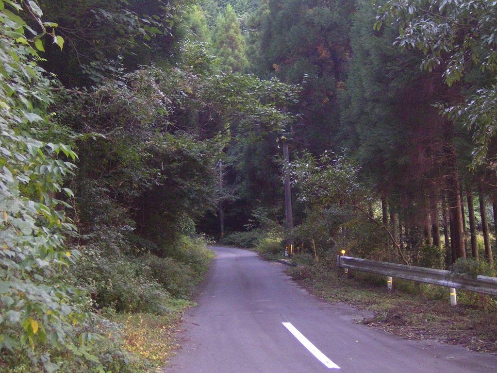 旧国道442号・竹原峠: エフコルの小屋